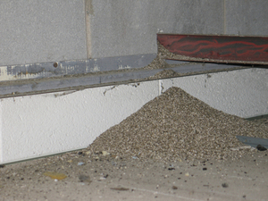 This is a picture of vermiculite insulation seeping out of a wall.